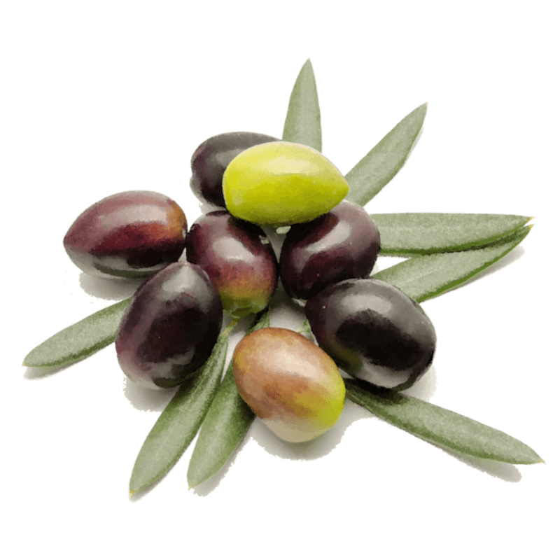 Olivenöl vom Dorfladen